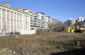 Disparition des arbres sur le site du futur hôtel
